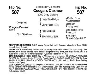 Cougars Cashew Catalog Listing ~ Sold for $17k, Oct/2015